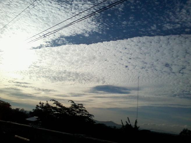 Photo0193